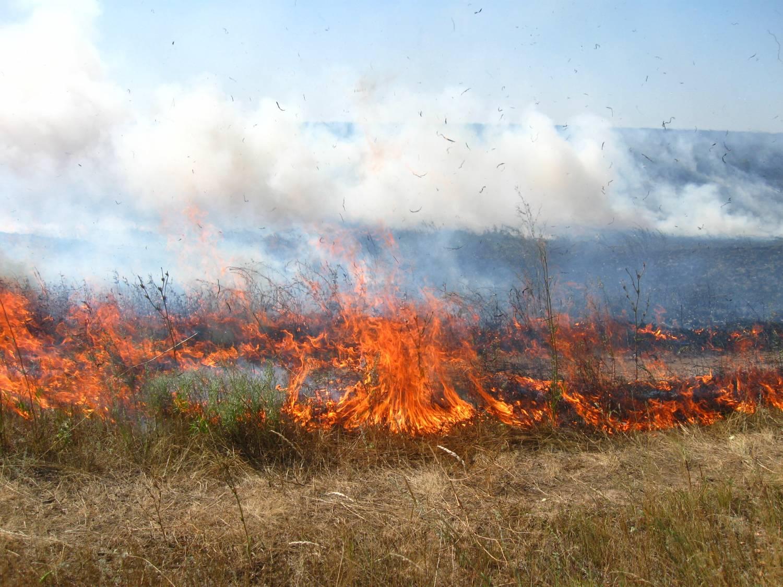 Пожары за сутки уничтожили в Республике более 100 домов  и более 500 га леса и степи